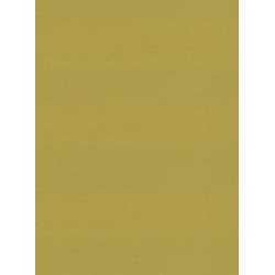 Atlantex Asc Lime Replacement Slats