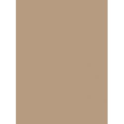 Polaris Barley Replacement Slats