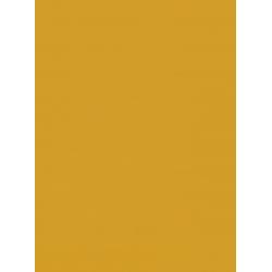 Palette Turmeric Replacement Slats