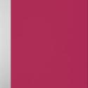 Palette Fuschia